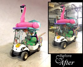 flamingo_before-after