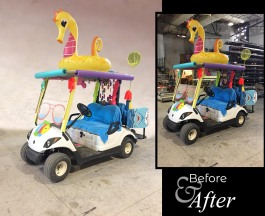 seahorse_before-after
